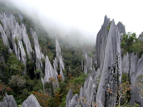 ถ้ำที่มีขนาดใหญ่ที่สุดใน